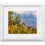 Latitude Run® Great Egret Fishing in Autumn 2 by Beth Sheridan - Picture Frame Photograph Print on Paper Paper in Blue/Brown/Green   Wayfair