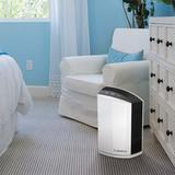 Lasko Tabletop Air Purifier w/ HEPA Filter in Gray/White, Size 14.75 H x 10.31 W x 7.33 D in | Wayfair LP200