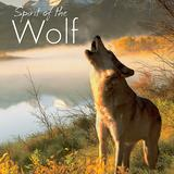 Willow Creek Press Spirit Of The Wolf Book