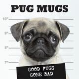 Willow Creek Press Pug Mugs Book