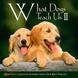 Willow Creek Press What Dogs Teach Us II Book