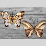 Elana Butterfly Wall Art Multi Metallic Set of Two, Set of Two, Multi Metallic