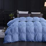 Light Blue All Season Goose Down Pintuck Comforter- Queen Size 90 x 90 Inches 1 pc Pinch Pleated Comforter 600 GSM & 4 - Corner Tabs 100% Egyptian Cotton- Hypoallergenic Light Blue Solid
