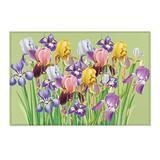 Area Rugs, Floral Area Rug, Irises Area Rug, Light Green Rug with Irises, Flower Rug, Flower mat, Floral mat, Light Green mat with Irises
