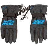 Carolina Panthers Team Color Insulated Gloves