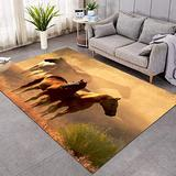 JDCreativity Horses Printed Area Rug Brown Teen Boys Indoor Area Rugs Wild Animal Area Rugs for Living Room & Bedroom,Orange and Gold Sunset 6039inch