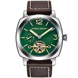 Pagani Design Men's Automatic Watches Tourbillon Fashion Men Mechanical Wristwatches Skeleton Dial Analog Digital dial Casual Leather Bracelet (Silver Green)