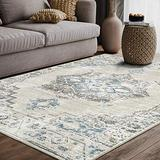 Traditional Distressed Vintage Style Area Rug, Urbana Collection - Classic Grey & Blue Turkish 4' x 6' Rectangle Accent by Abani Rugs