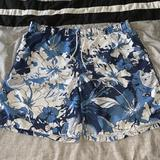 Nike Swim   Nike Mens Xxl Swimsuit Swim Trunk Shorts Colorful   Color: Blue/White   Size: Xxl