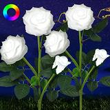 Solar Roses Flower Lights, 6 Pack Roses Color-Changing Solar Lights Outdoor Decorative Solar Pathway Lights Outdoor for Patio Pathway Courtyard Garden Lawn Decoration HELESIN (2 Pack)