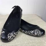 Coach Shoes   Coach Reagan Legacy Ocelot Print Ballet Flats   Color: Black/White   Size: 8