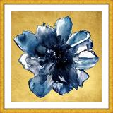 Vintage Print Gallery 'Botanical II' - Picture Frame Painting Print on Paper Paper in Blue/Brown/Yellow, Size 32.0 H x 32.0 W x 1.0 D in | Wayfair
