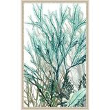 Vintage Print Gallery 'Seaweed Panel I' - Picture Frame Graphic Art Print on Paper Paper in Blue/Brown/Gray, Size 38.0 H x 22.0 W x 1.0 D in Wayfair