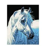 Puzzles for Adults 1000 Piece/Animal Horse(50x75cm)Puzzle Games, Educational Games, Brain Challenge Puzzles for Adults