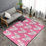 """NiYoung Premium Ultra Soft Canadian Hairless Sphynx Cat Pink Area Rug, Non-Slip Floor Mats Throw Rugs Carpets, Indoor Outdoor Area Rugs for Living Room/Dormitory/Playroom/Bedroom/Nursery (60""""x39"""")"""