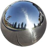 Stainless Steel Gazing Globe Ball, Durable Outdoor Mirrors Gazing Ball, Gazing Balls for Garden on Clearance, Gazing Globe Mirror Ball, Garden Sphere Metal (Color : 120mm)