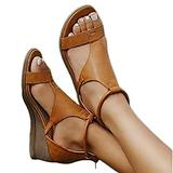 PPTT Women's Platform Sandals T-Strap Heel Sandals Ankle Strap Open Toe Sandals, Roman Style Retro Sandals Casual Back Side Zipper Wedge Sandals Vintage Beach Sandals,Brown,36