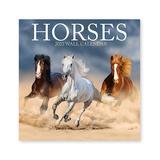 Turner Licensing Calendars MULTI - 'Horses' Jan-Dec 2022 Calendar