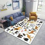Zoo Animals Collection Area Rugs Non-Slip Floor Mat Doormats Home Runner Rug Carpet for Bedroom Indoor Outdoor Kids Play Mat Nursery Throw Rugs Yoga Mat
