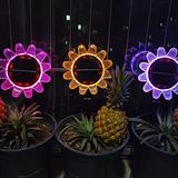 Solar Lights - Waterproof Outdoor Solar Lights Color Changing Garden Lights with Remote Control Outside Decoration Sunflowers Solar Lamp 14 Luminous Modes for Patio Porch Yard (Ordinary, 2 pc)