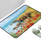 """Entrance Modern Area Rugs Flower Coastal Seascape and Poppies on The Cliffs High Above The Bay Image Print Red Peach Dark Green 23.5"""" x 15.5"""" Rectangle Modern Area Rug with Non-Skid"""