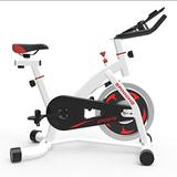 BLLXMX Spinning Bike,Exercise Bikes,Indoor Cycling Bike,Peloton Bike,Stationary Bike,Cycle Bikes for Exercise,for Home Cardio Gym