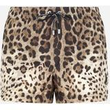 Short Leopard-print Swim Trunks With Plate - Brown - Dolce & Gabbana Beachwear