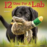 Willow Creek Press 12 Uses for a Lab 2022 Wall Calendar