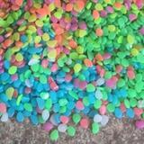 Arlmont & Co. 100Pcs Aquarium Glow In The Dark Artificial Pebbles Luminous Stones Garden Decor Resin   Wayfair C2660B4B05BB4FBE971C0B46073A8710