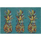 Tropix Trio Pineapple Coir Outdoor Mat