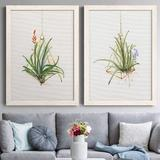 Red Barrel Studio® Gardenaire I - 2 Piece Picture Frame Painting Set on Canvas Canvas & Fabric in Black/Blue/Brown, Size 37.5 H x 27.5 W x 1.0 D in