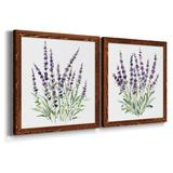 Ophelia & Co. Lavender Botanical I - 2 Piece Picture Frame Painting Set on Canvas Canvas & Fabric in Black/Blue/Brown | Wayfair