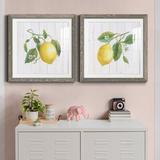 Red Barrel Studio® Lemon Fresh I - 2 Piece Picture Frame Painting Set Paper in Black/Blue/Brown, Size 24.0 H x 24.0 W x 1.0 D in | Wayfair