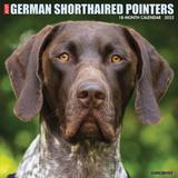 Willow Creek Press Just German Shorthaired Pointers 2022 Wall Calendar