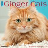 Willow Creek Press Just Ginger Cats 2022 Wall Calendar