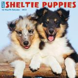 Willow Creek Press Just Sheltie Puppies 2022 Wall Calendar