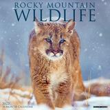 Willow Creek Press Rocky Mountain Wildlife 2022 Wall Calendar