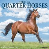 Willow Creek Press American Quarter Horses 2022 Wall Calendar