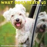 Willow Creek Press What Dogs Teach Us 2022 Wall Calendar