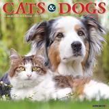 Willow Creek Press Cats & Dogs 2022 Wall Calendar