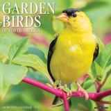 Willow Creek Press Garden Birds 2022 Wall Calendar