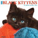 Willow Creek Press Just Black Kittens 2022 Wall Calendar