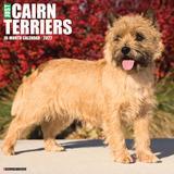 Willow Creek Press Just Cairn Terriers 2022 Wall Calendar
