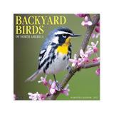 Willow Creek Press Calendars Various - Backyard Birds 18-Month 2022 Wall Calendar