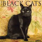 Willow Creek Press Just Black Cats 2022 Wall Calendar