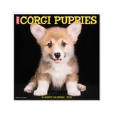 Willow Creek Press Calendars Various - Just Corgi Puppies 18-Month 2022 Wall Calendar