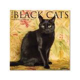 Willow Creek Press Calendars Various - Just Black Cats 18-Month 2022 Wall Calendar