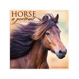 Willow Creek Press Calendars Various - Horse: A Portrait 18-Month 2022 Wall Calendar