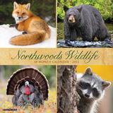 Willow Creek Press Northwoods Wildlife 2022 Wall Calendar