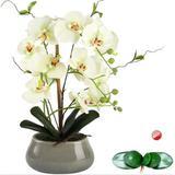 Primrue Artificial Orchid Flowers Centerpieces For Dining Room Table w/ Vase Silk Fake Plants Arrangements Decorations Faux Phalaenopsis Pot Orchids Floral